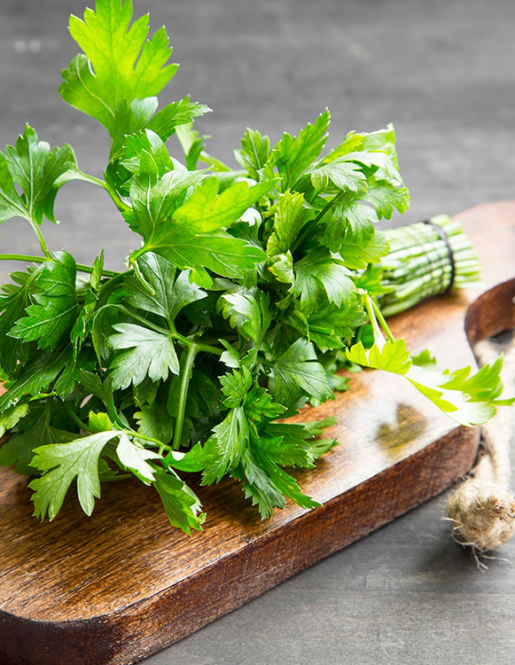 Parsley for Om My Goodness juices